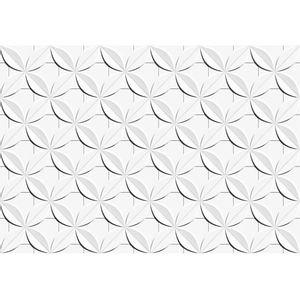 Revestimento-Ceusa-Esmaltado-Dalia-Branco-Retificado-437x631cm