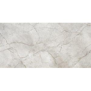 Porcelanato-Elizabeth-MaxiSilver-HD-Polido-625x125cm