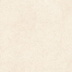 Piso-Fioranno-Palmi-Plus-Retificado-61x61cm