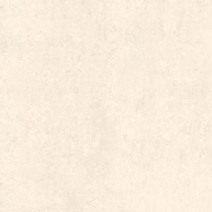 Porcelanato-Cristofoletti-61005-Marmo-Capri-61x61cm